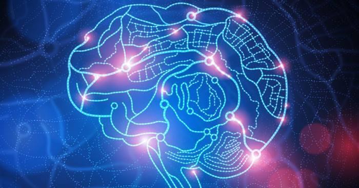Using Mindfulness to Rewire the Brain