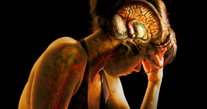 Stress: It's Not in Your Head, it's in Your Nervous System