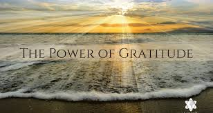 The Transformative Power of Gratitude: 6 Key Principles to Harness the Power